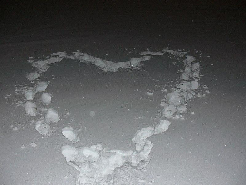 File:A heart (289310896).jpg