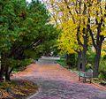A park bench at the Idaho Botanical Garden.jpg