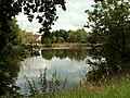 A view of Polstead's village pond - geograph.org.uk - 846483.jpg
