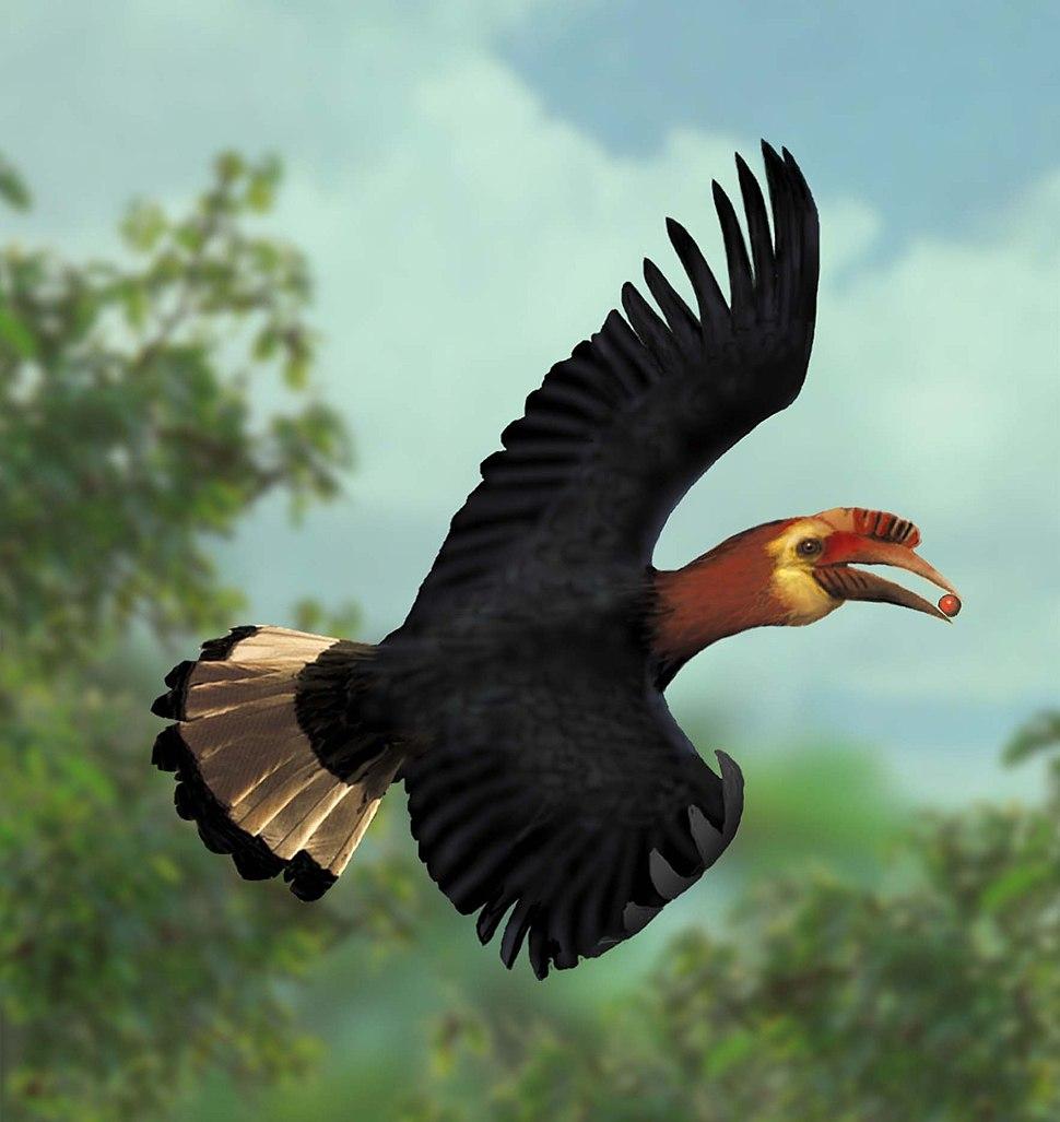 A waldeni flying