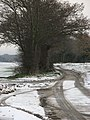A wintry Cross Lane - geograph.org.uk - 1623948.jpg