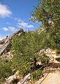 Above cueva de la pileta.jpg