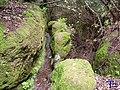 Acequia - panoramio (1).jpg