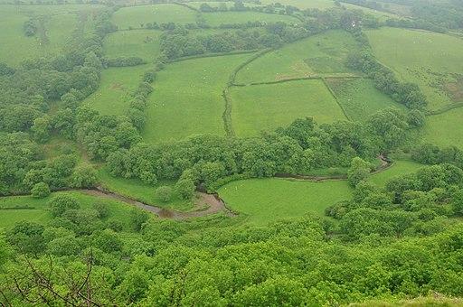 Afon Cennen below Carreg Cennen Castle (8660)
