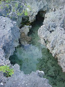 Aldabra atolo