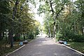 Alexandrovskiy park. Kirov. Russia. Александровский сад. Киров. Россия - panoramio.jpg