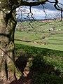 Aller Brook valley - geograph.org.uk - 763838.jpg