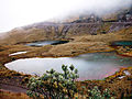 Ama la Vida - Flickr - Lagunas Verdes prov Carchi (8227400450).jpg