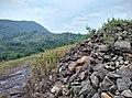 Ambalapara - Ii, Kerala, India - panoramio (15).jpg