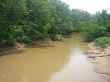 Angelina River west of Nacogdoches, Texas.JPG