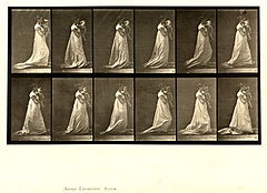 Animal locomotion. Plate 36 (Boston Public Library).jpg