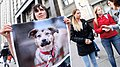 Animal welfare activists picketed the State Duma building (Russia).jpg