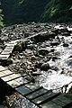Anmon falls footpath - panoramio - torakiti (1).jpg