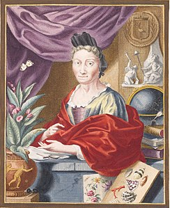 Anna Maria Sibylla Merian portrait in color.jpg