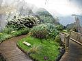 Antarctic Garden Hobart BG.jpg