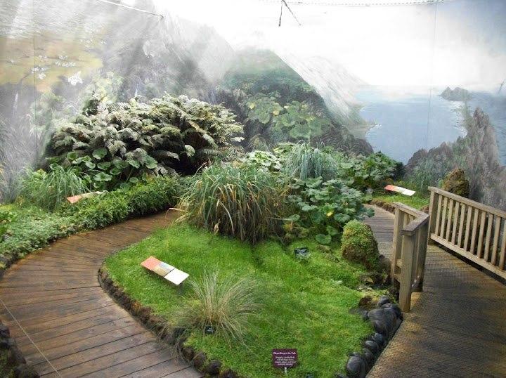 Antarctic Garden Hobart BG