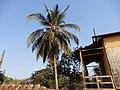 Antigo Quartel do Centro de Instrução Militar, Bolama, Guiné-Bissau – 2018-03-03 – DSCN1374.jpg