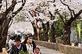 Aoyama Cemetery (3455696127).jpg