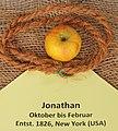 Apfel 084 Jonathan (fcm).jpg