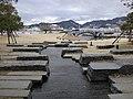 Aqua Garden - panoramio (15).jpg