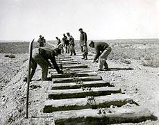 Argentina - Trabajadores ferroviarios en 1952.jpeg