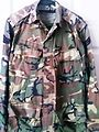 Army Camouflage Uniform.jpg