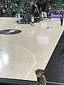 Asvel-Gravelines (Pro A basket-ball) - 2018-04-28 - 8.JPG