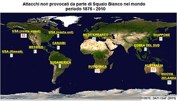 Locazione geografica degli attacchi non provocati di Squalo Bianco nel mondo