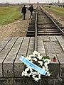 Auschwitz II-Birkenau - Death Camp - Rail Lines with Memorial Wreath - Oswiecim - Poland.jpg