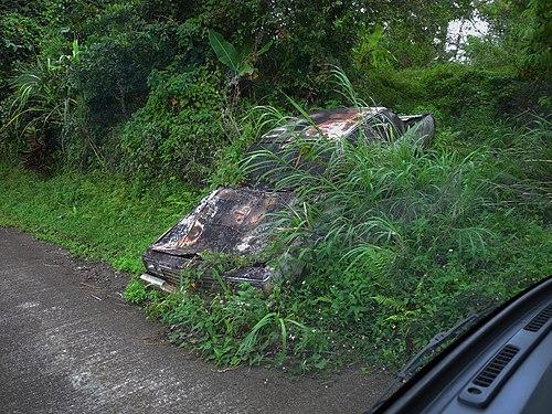 Autowrack an der Strasse.jpg