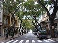 Avenida Zarco, Sé, Funchal - 22 Jan 2012 - SDC14981.JPG