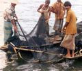 BD-fishermen.jpg