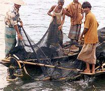Le lac la pêche russe le goujon