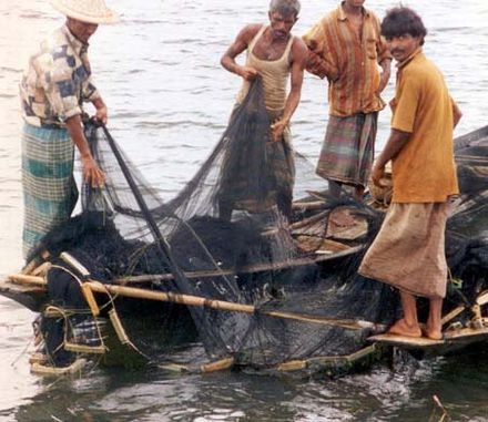 Fishermen with fishnets in Bangladesh - Irrawaddy dolphin