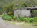 Baños Ecuador719.jpg