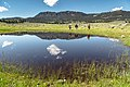 Backpackers near an ephemeral pool on the Hellroaring Creek Trail (41717854154).jpg