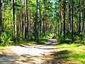 Balakhninsky District, Nizhny Novgorod Oblast, Russia - panoramio (13).jpg