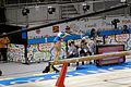 Balance 6 2015 Pan Am Games.jpg
