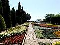 Balchik Botanical Garden 2017 E91.jpg