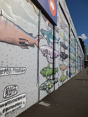 Shark finning - A mural protesting shark finning in Wellington, New Zealand