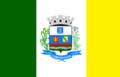 Bandeira Camanducaia MG.png