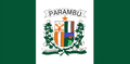 Bandeira Parambu.png