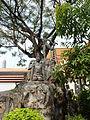 Bangkok Wat Pho P1100664.JPG