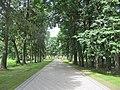 Bartkuškis 19159, Lithuania - panoramio (16).jpg
