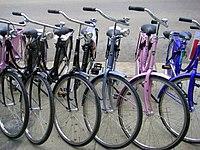 Bicicleta doméstica