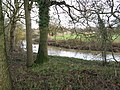 Bend in the River Arun - geograph.org.uk - 1611512.jpg