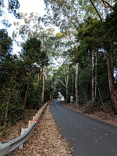 Berry Mountain, New South Wales Town in New South Wales, Australia