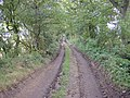 Best Lane, Farnley Tyas - geograph.org.uk - 564936.jpg