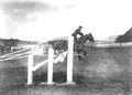 Bild von der Springkonkurrenz der Kavallerie Rekrutenschule Bern - CH-BAR - 3239791.tif