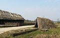 Biskupin, osada neolityczna.JPG